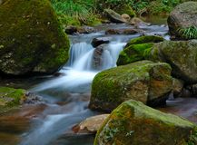 Stream. The stream tumbled over the rocks Royalty Free Stock Photo