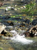 Stream. A peaceful stream in Cyprus royalty free stock image