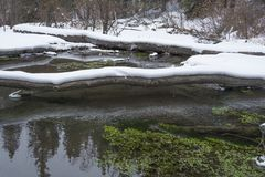 Big Hill Springs Provincial Park stream in winter Royalty Free Stock Photo