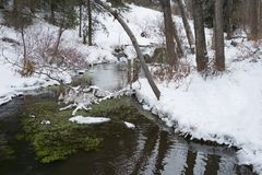 Big Hill Springs Provincial Park stream in winter Stock Images
