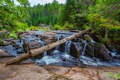 Free Stream Algonquin Park Ontario Canada Royalty Free Stock Image - 159652836