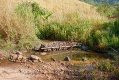 Stream arid. On Mountain arid dry on summer Royalty Free Stock Photo