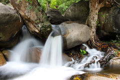 Stream in the Australian Outback Stock Photography