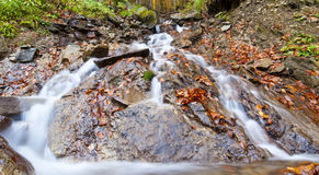 Stream in autumn Royalty Free Stock Images