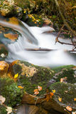 Stream in autumn Royalty Free Stock Image