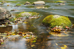 Stream in autumn Stock Photo