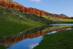 Stream in autumn. Abruzzo national park italy stock photo