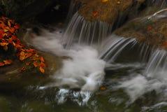 Stream in autumn. Abruzzo national park italy stock image