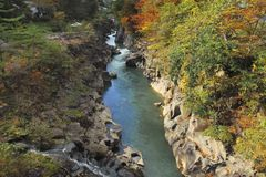 Stream and Autumn leaf color Royalty Free Stock Photo