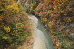 Stream and Autumn leaf color Royalty Free Stock Image