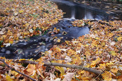 Stream and autumn leaves - long exposure Stock Photo