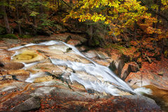 Stream in Autumn Mountain Forest Royalty Free Stock Photography