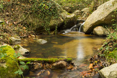 Stream in autumn, Spain. Stream in autumn with warm colors Stock Photo