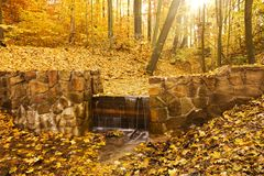 Stream in autumn Royalty Free Stock Photos