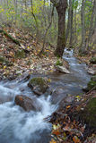 Stream. In the autumn, Zadiel, Slovakia Royalty Free Stock Images