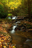Stream in Autumnal forest. Scenic view of stream and waterfalls in Autumnal forest with slow motion blur Royalty Free Stock Photos
