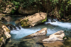 Stream Bahias (Hermon), National Reserve, Israel. Golan heights Stock Image