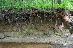 Free Stream Bank Erosion Stock Photos - 54217473