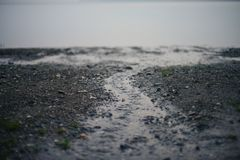 Stream on the beach royalty free stock image