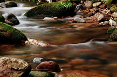 The stream. Beautiful  scenery in the stream,moss growing on stone, harmonious and peaceful Stock Image