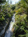 Stream in a Biome 2. The Eden Project Royalty Free Stock Photos