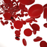 Stream of blood cells Royalty Free Stock Image