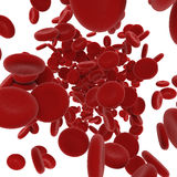 Stream of blood cells Stock Photography
