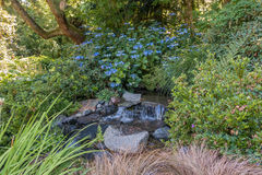 Stream With Blue Flowers Royalty Free Stock Image