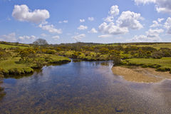 Stream on Bodmin Moor Stock Image