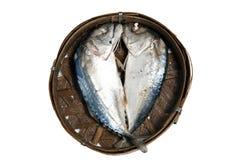 Stream boiled mackerel Stock Image