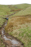 Stream Carving Path Through Hillside Stock Image