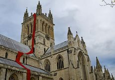 Stream of Centenary poppies from the top of the tower of Selby Cathedral. stock photos