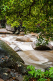 Stream of Chamang Fall Royalty Free Stock Photo
