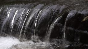 Stream of clear water water. Clear water stock video footage