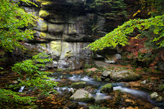 Stream and Cliff in Mountain Forest Stock Photography