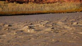 Stream of Colorado River stock video