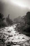 A stream coming through the mist. A mountain stream emerges from fog and mist Stock Photo