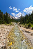 Stream in Contrin Valley Stock Photography