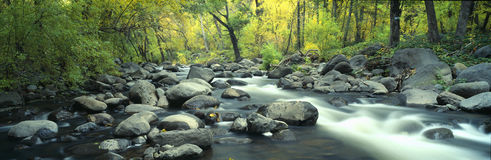 Stream in Cottonwood Canyon Royalty Free Stock Photo