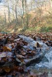 Stream in countryside Royalty Free Stock Photography