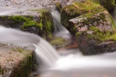 Stream course in the Harz mountains stock images