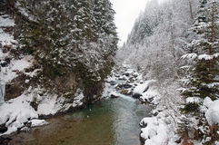 Stream covered in snow, Austria Stock Photos