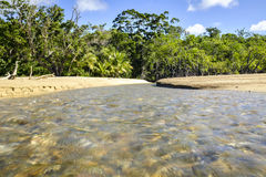 Stream on Cow Bay Beach Royalty Free Stock Photography