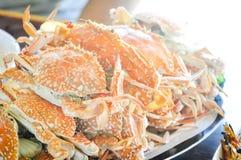 Stream crab Stock Photography