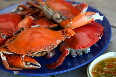 Stream crab with seafood source Stock Photo