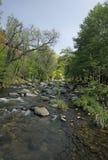 Stream Creek Stock Photos