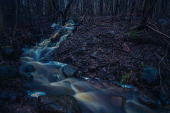 Stream in a dark autumn forest Royalty Free Stock Photos