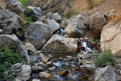 Stream in the dark of the Tien Shan Gorge Royalty Free Stock Photography