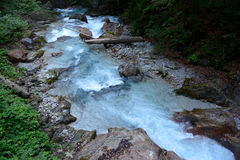 Stream in deep rocky ravine. Royalty Free Stock Image