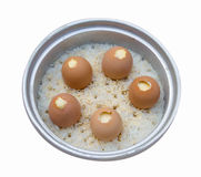 Stream Egg and rice in electric rice cooker isolated Stock Photography